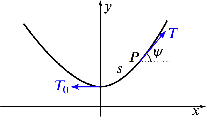 Graph showing the curve of the rope with a force T_0 being applied leftwards at the bottom of the curve, and a force T being applied upwards and to the right, along the rope, at the point P.