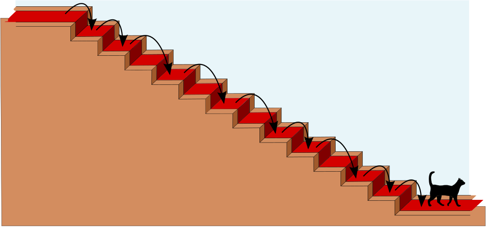 cat having walked down a staircase