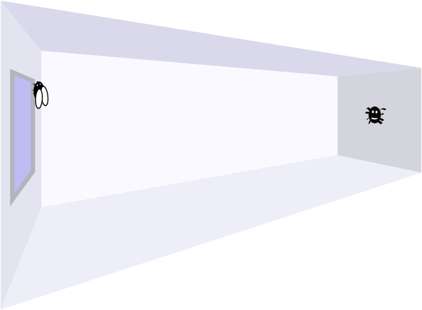 Room with dimensions as described with spider opposite fly
