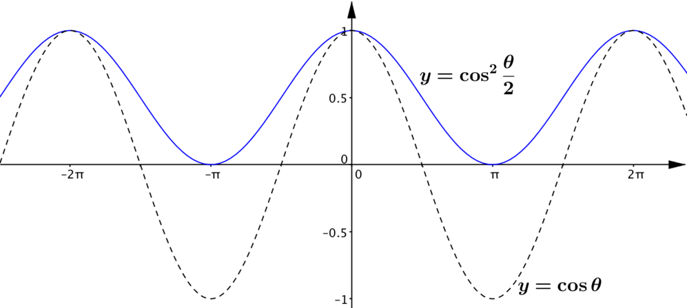 The graph of cos squared thetha over 2 which is obtained from the graph of cos theta by first translating upwards by 1 and then stretching by a scale factor of a half in the y direction